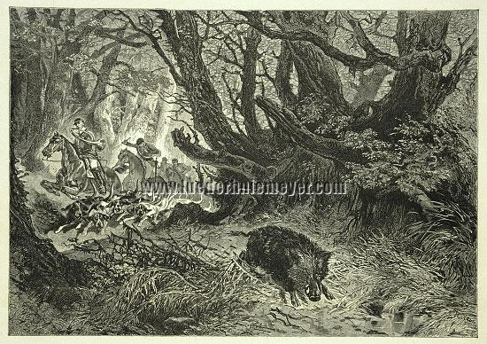 Alphonse de Neuville, Par force hunt for wild boar