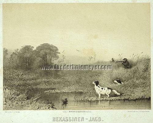 Eugen Krüger, Common Snipe Hunt