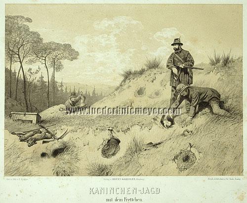Eugen Krüger, Kaninchen-Jagd