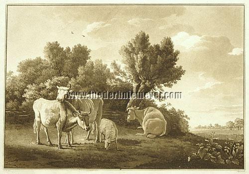 Paulus Potter, Cattle Piece
