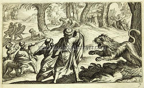 Tempesta, Löwenjagd
