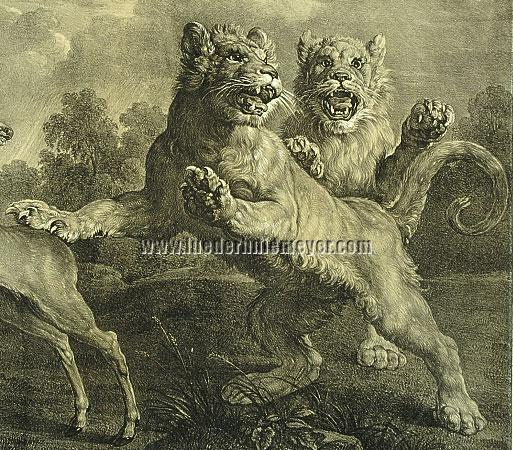 Snyders, Young Lions (detail)