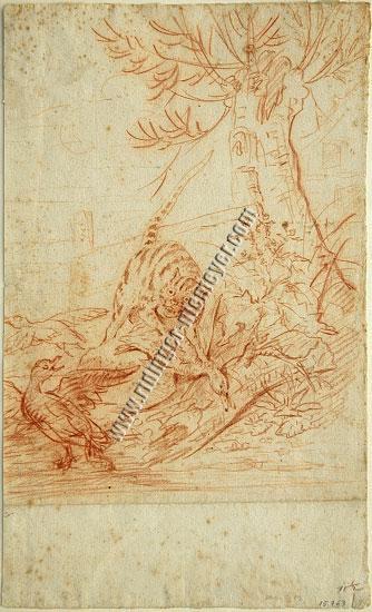 Johann Elias Ridinger, He-cat among Three Ducks
