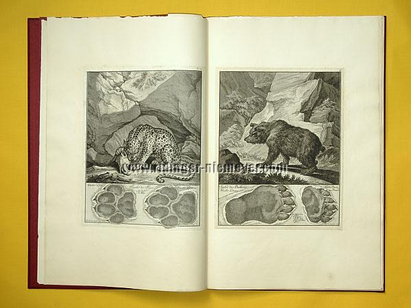 Johann Elias Ridinger, Traces of Tiger + Bear (Th. 164 + 165)