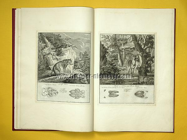 Johann Elias Ridinger, Traces of Wolf + Roebuck (Th. 170 + 171)