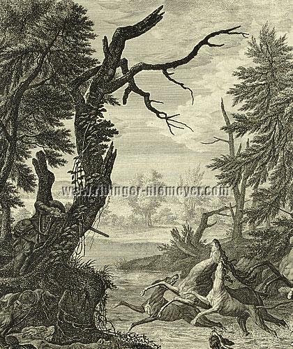 Ridinger, Hirschjagd (Detail)