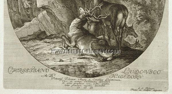 Ridinger, The Deer's Morning