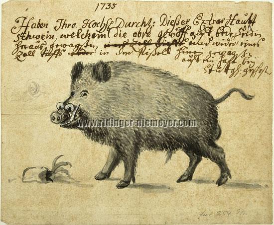 Extra Main Boar