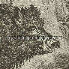 Extra Main Boar (detail etching)