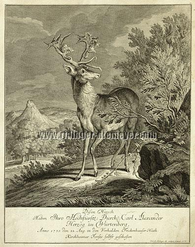 Ridinger, Stag before Hohenneuffen Castle