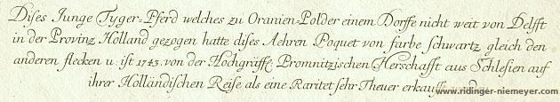 Johann Elias Ridinger, Tigerpferd von Promnitz