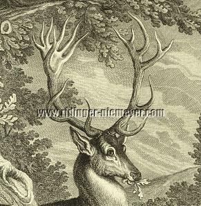 Stag of Odd 18 Points (detail etching)