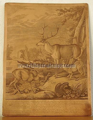 Johann Elias Ridinger, Stag with Three Legs