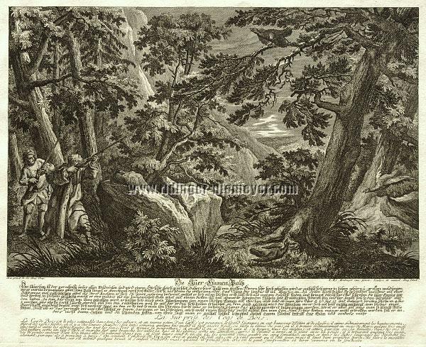 Johann Elias Ridinger, Die Auer=Hanen Paltz