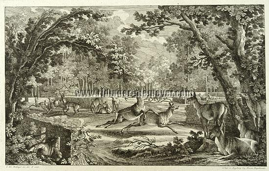 Johann Elias Ridinger, How the Deer are stalked in a Deer Park