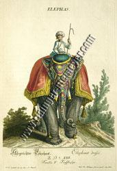 Johann Elias Ridinger, Abgerichter Elep