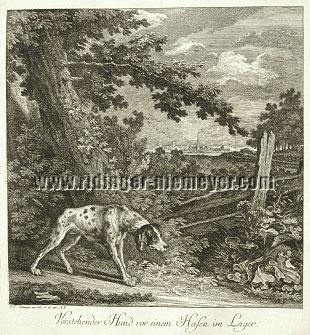 Johann Elias Ridinger, Pointer before Hare