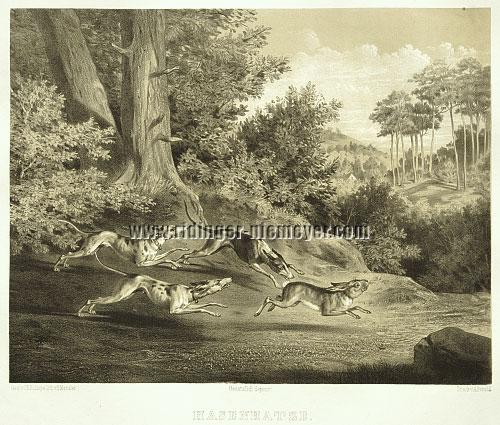 Johann Elias Ridinger, Hare Hunt