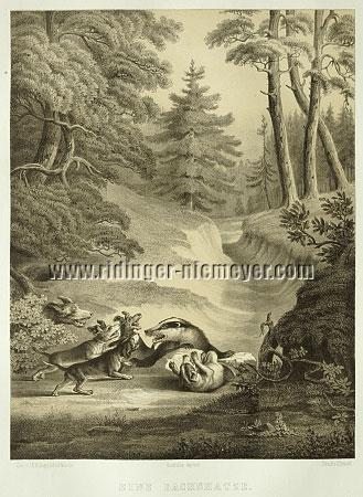 Johann Elias Ridinger, Badger Hunt (Lithograph by Hermann Menzler)