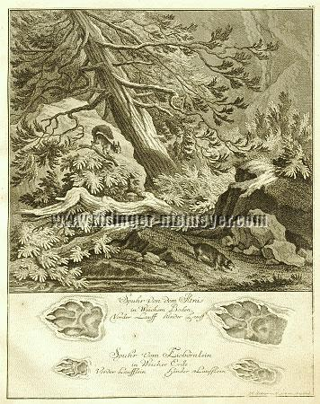 Johann Elias Ridinger, Trace of Polecat & Squirrel
