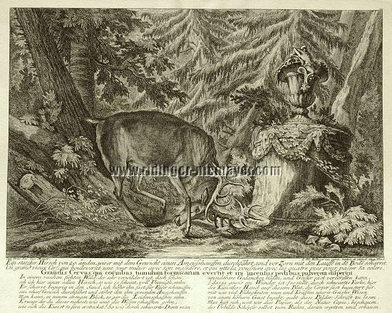 Johann Elias Ridinger, Ein starker Hirsch von 20 Enden