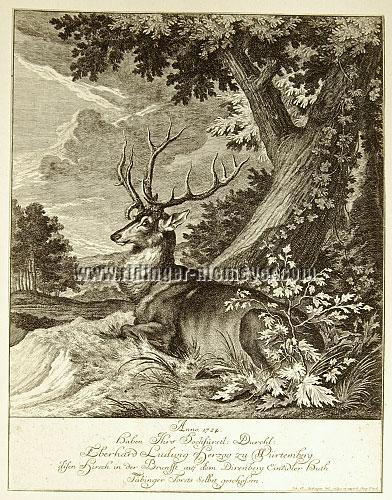 Johann Elias Ridinger, 1724 Eberhard Ludwig Duke of Wurttemberg has shot this Stag in the rut