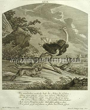 Johann Elias Ridinger, Ostrich against Wolf/Fox