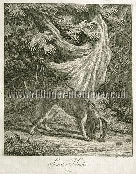 Johann Elias Ridinger, Leit-Hund
