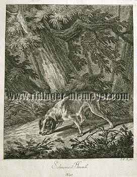 Johann Elias Ridinger, Bloodhound