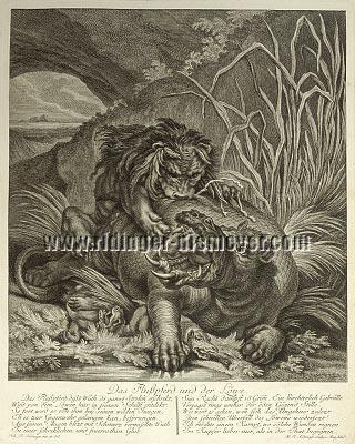 Johann Elias Ridinger, The Hippopotamus and the Lion