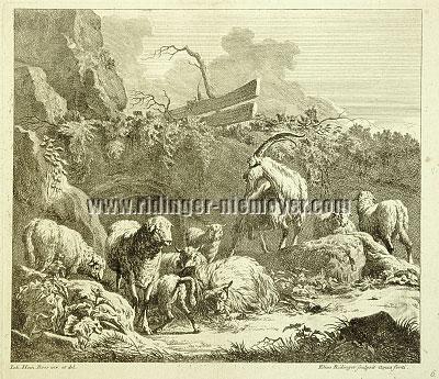 Johann Elias Ridinger, Viehstücke nach Johann Heinrich Roos VI
