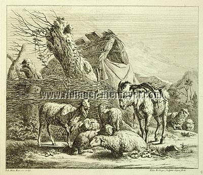 Johann Elias Ridinger, Animal Pieces after Johann Heinrich Roos IV