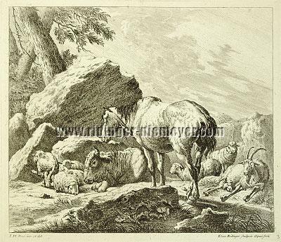 Johann Elias Ridinger, Animal Pieces after Johann Heinrich Roos III