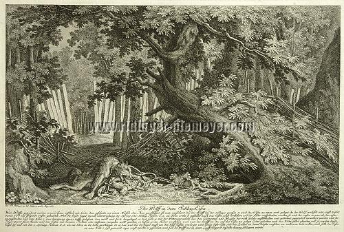 Johann Elias Ridinger, Wolf im Schlageisen