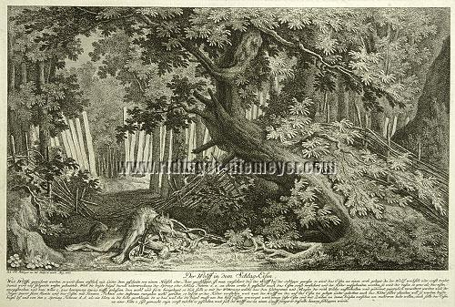 Johann Elias Ridinger, Wolf in the Iron Trap