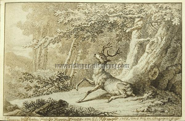 Ridinger, Deer