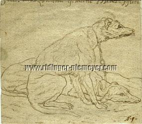 Johann Elias Ridinger, Smooth and shaggy Greyhounds (pen and brown ink)