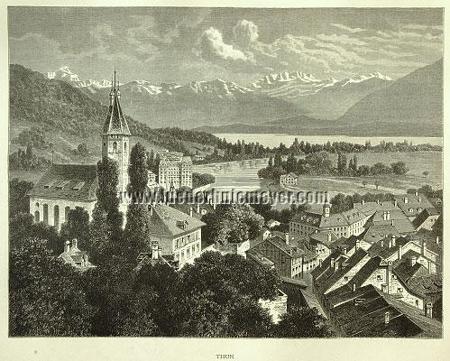 Gottfried Franz, Thun