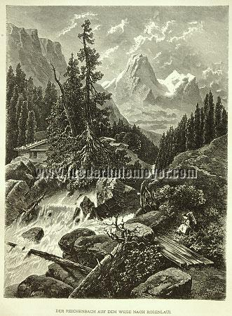Carl Jungheim, Reichenbach