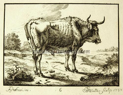 Nicolaes Berchem, Stier