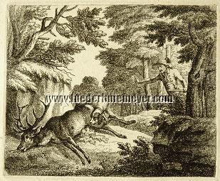 Joseph Georg Wintter, The Stag of 10 Points barked dead
