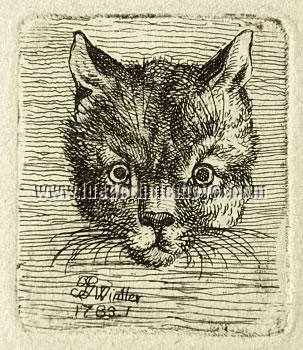Joseph Georg Wintter, Cat's Head