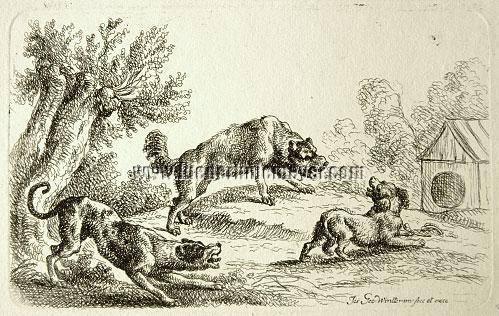 Joseph Georg Wintter, Three Dogs